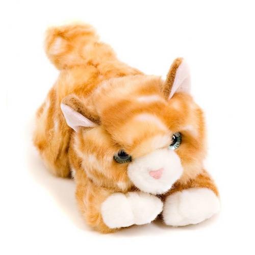 Мягкая игрушка Aurora Котик рыжий 22 см Бишкек и Ош купить в магазине игрушек LEMUR.KG доставка по всему Кыргызстану