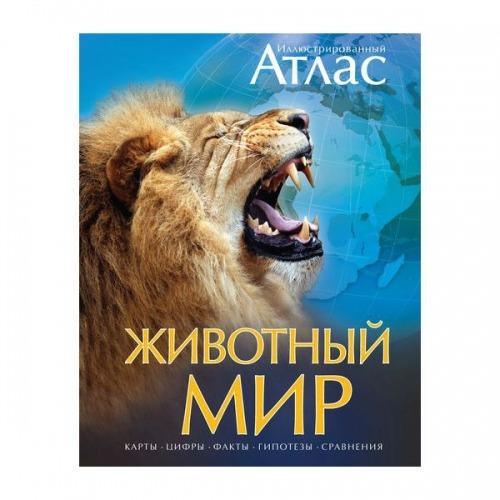 Бамбарадения, Вудрафф, Гинзберг: Животный мир. Иллюстрированный атлас Бишкек и Ош купить в магазине игрушек LEMUR.KG доставка по всему Кыргызстану