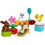 LEGO: Домашние животные Бишкек и Ош купить в магазине игрушек LEMUR.KG доставка по всему Кыргызстану